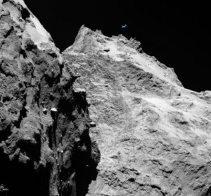 le prime immagini della cometa